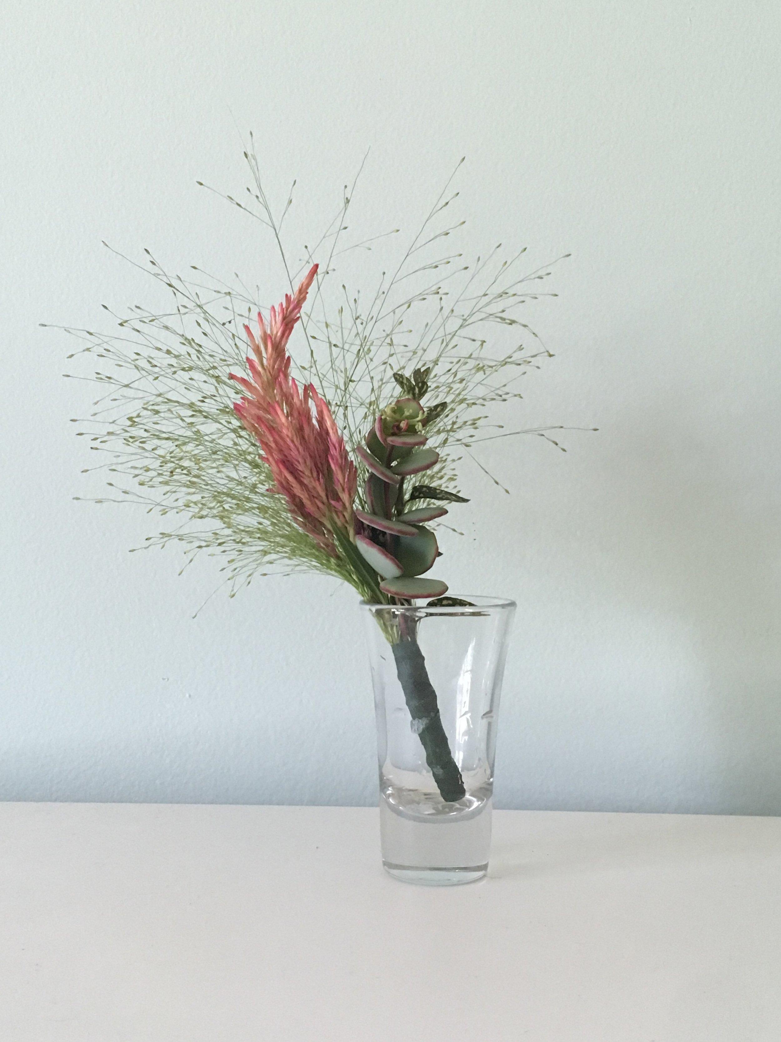 Ornamental Grass, Jade Leaf, Paintbrush