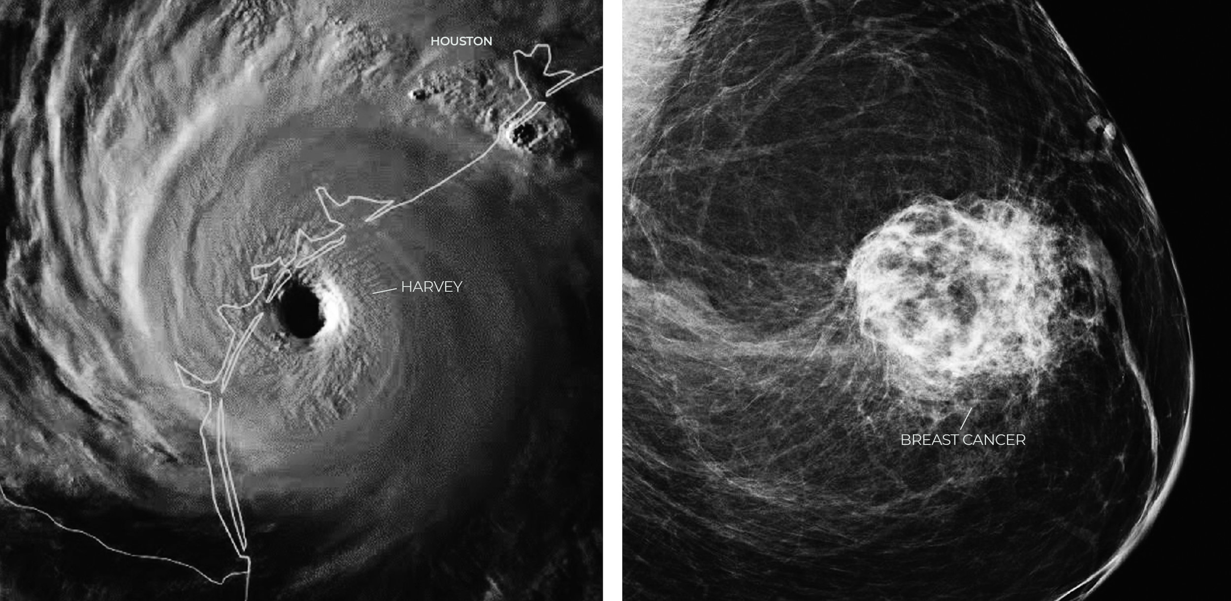 hurricane-cancer.jpg