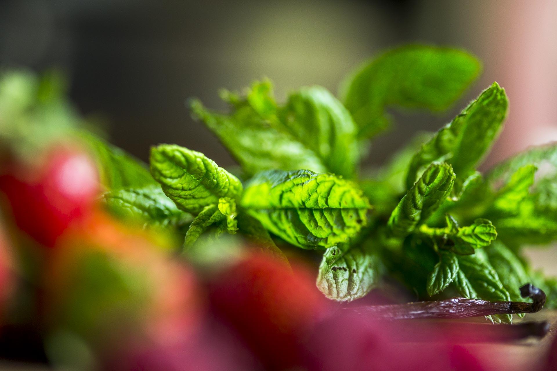 taboule_sucre_menthe_fraises©stephaneleroy-0230.jpg