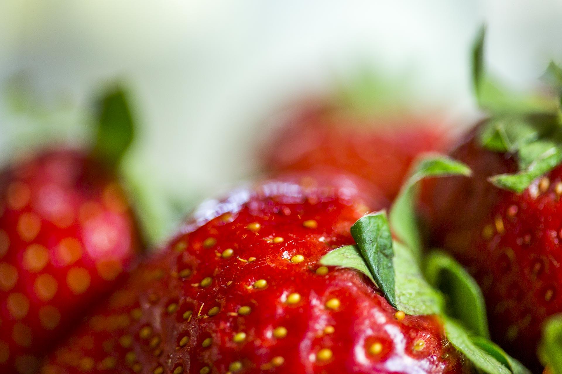 taboule_sucre_menthe_fraises©stephaneleroy-0233.jpg