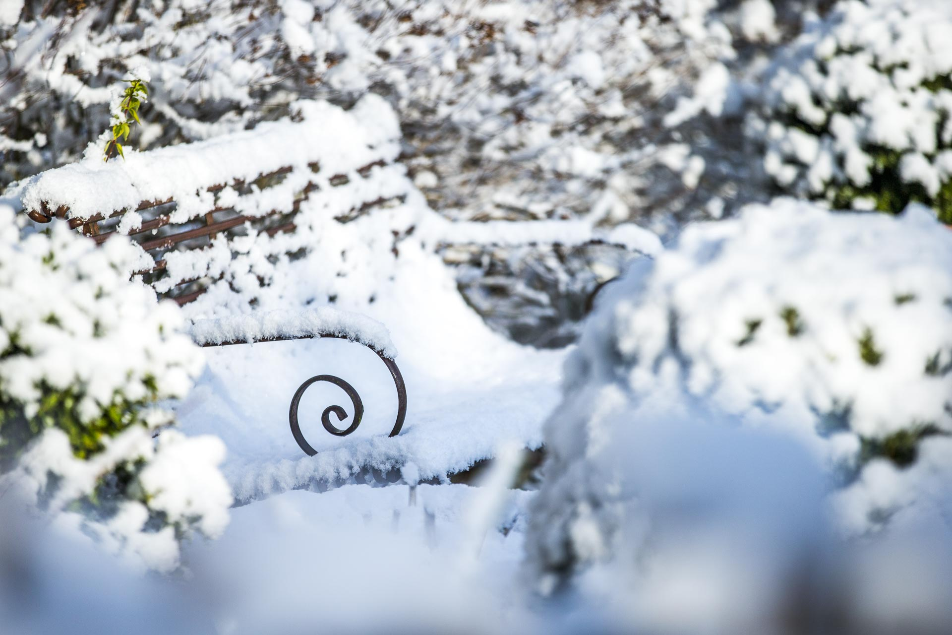 domaine_dablon_exterieurs_hiver©stephaneleroy-5309.jpg