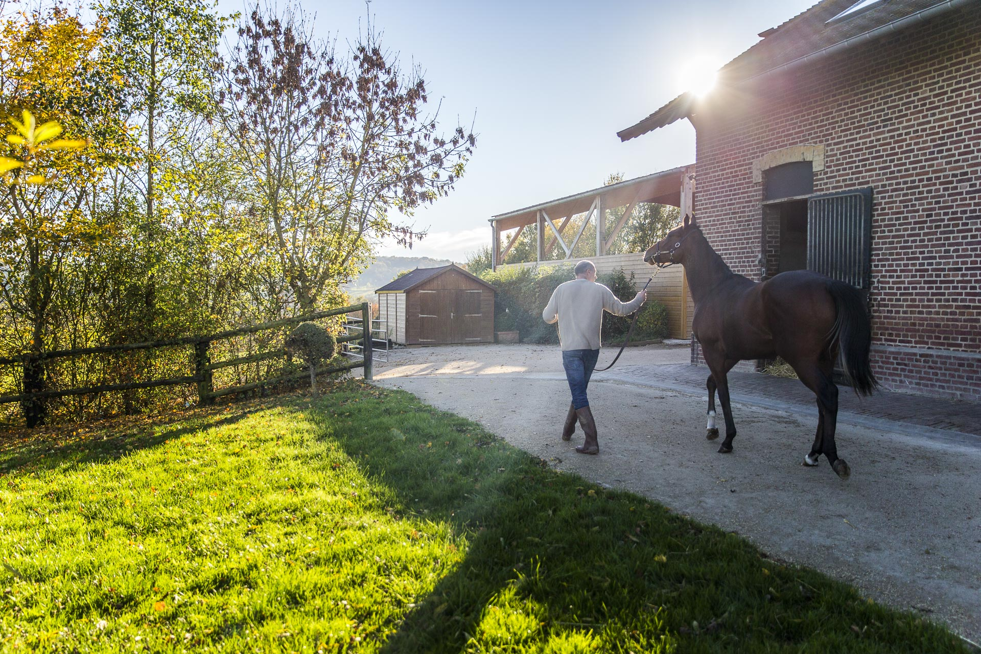 Discover the World of Horse Racing