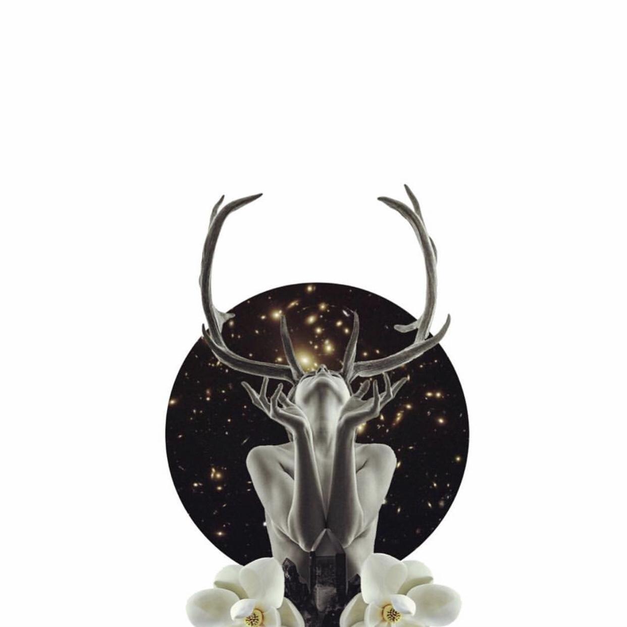 Art by  Brandi Van Nevel