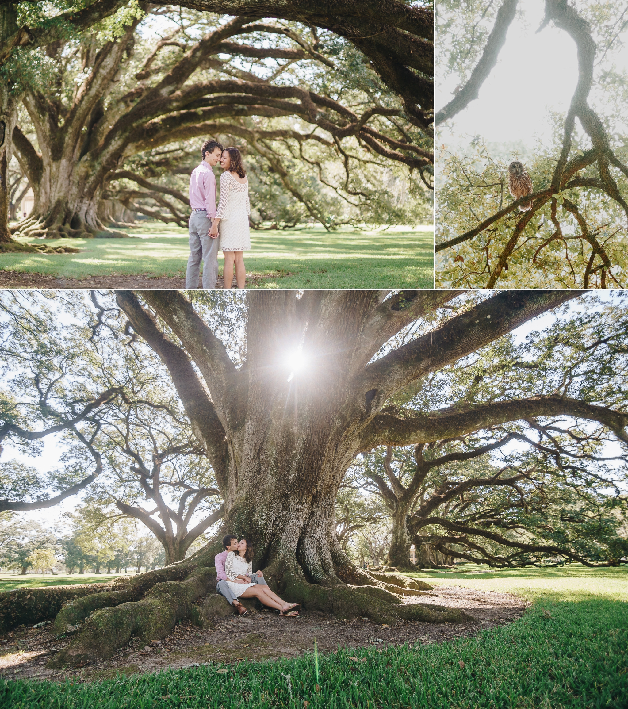 destination engagement session at oak alley plantation new orleans louisiana by jonathan hannah photography