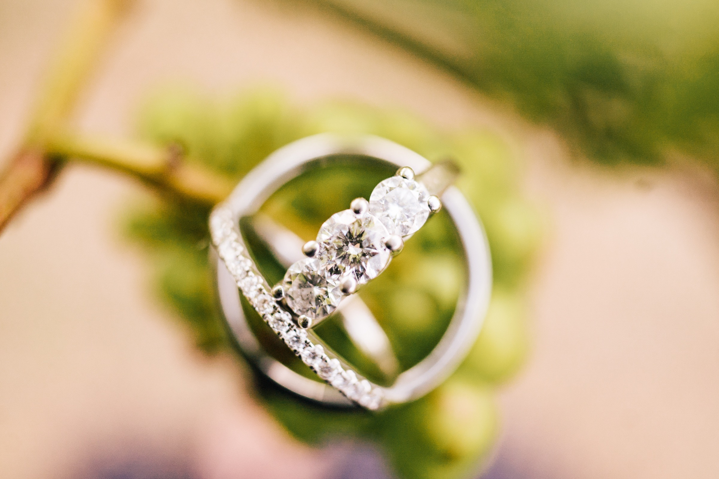 Midwest Chicago Vineyard Wedding by Jonathan Hannah Photography-14.jpg