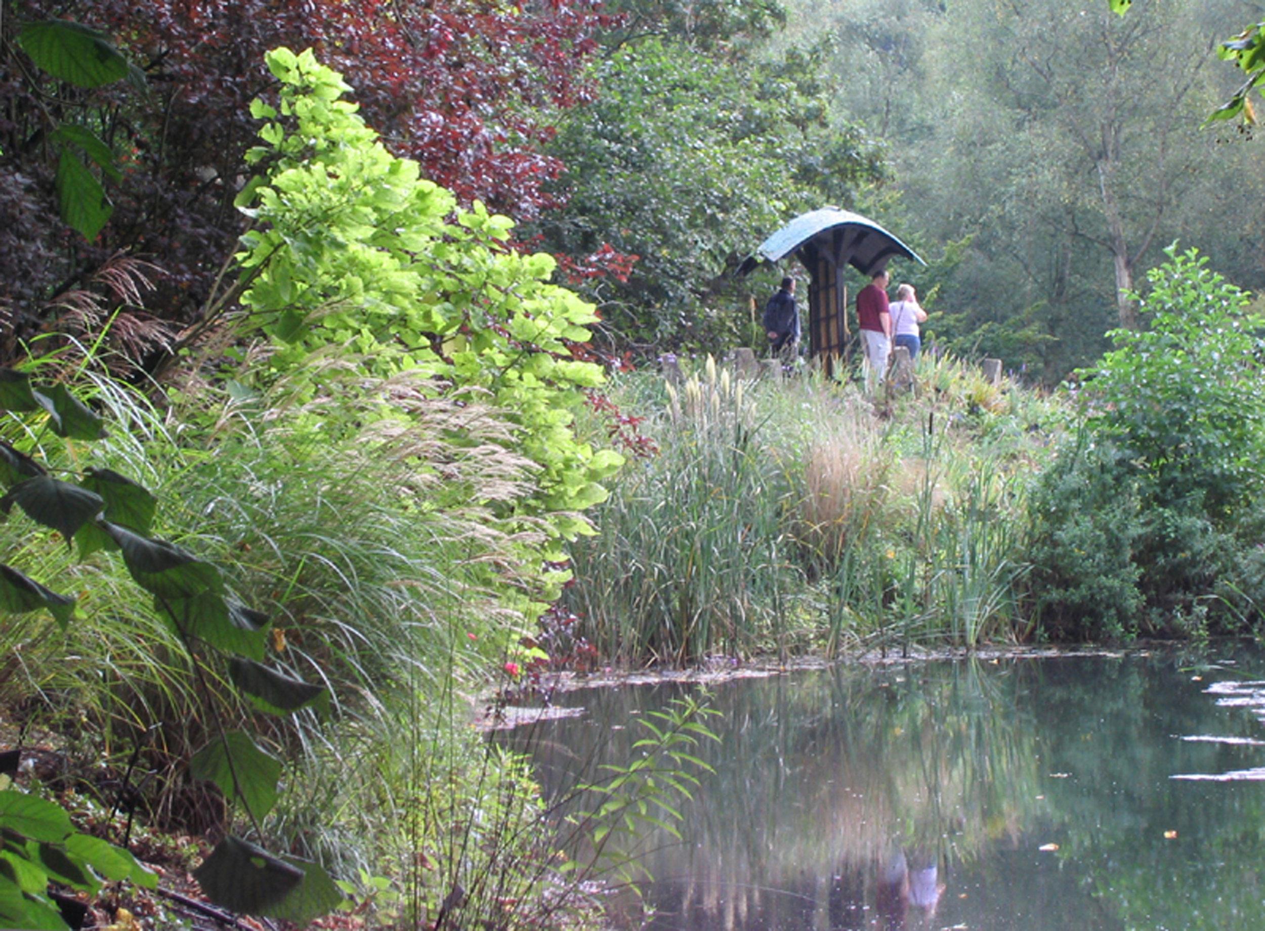 "2007 ""Amigasamon"" Abbey House Gardens, Malmesbury"