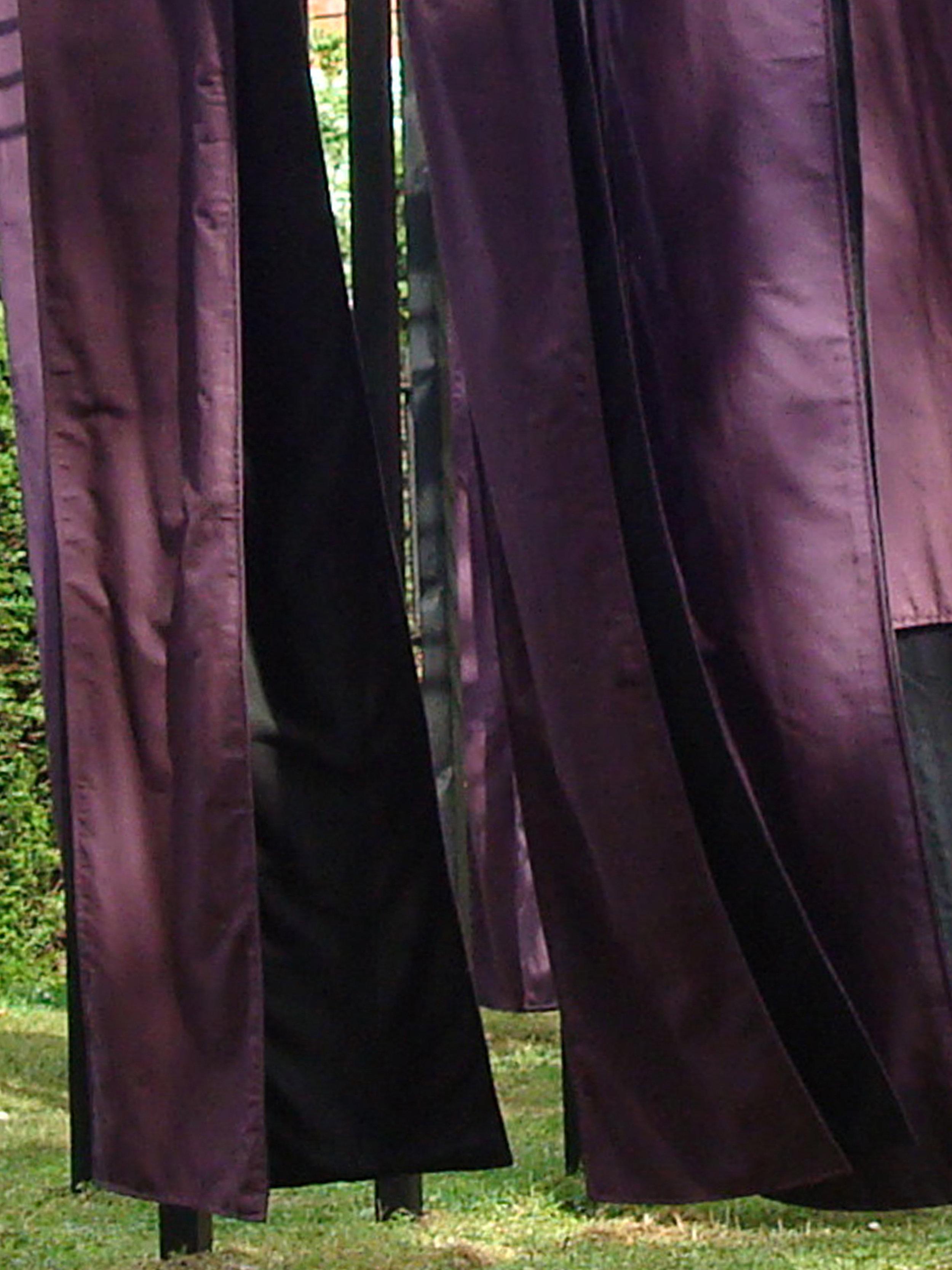 13 Obi V detail 2009 GNx.jpg