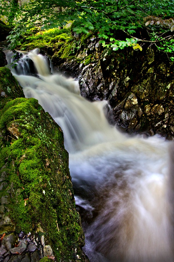 THE FALLS by Nick Chillingworth.jpg