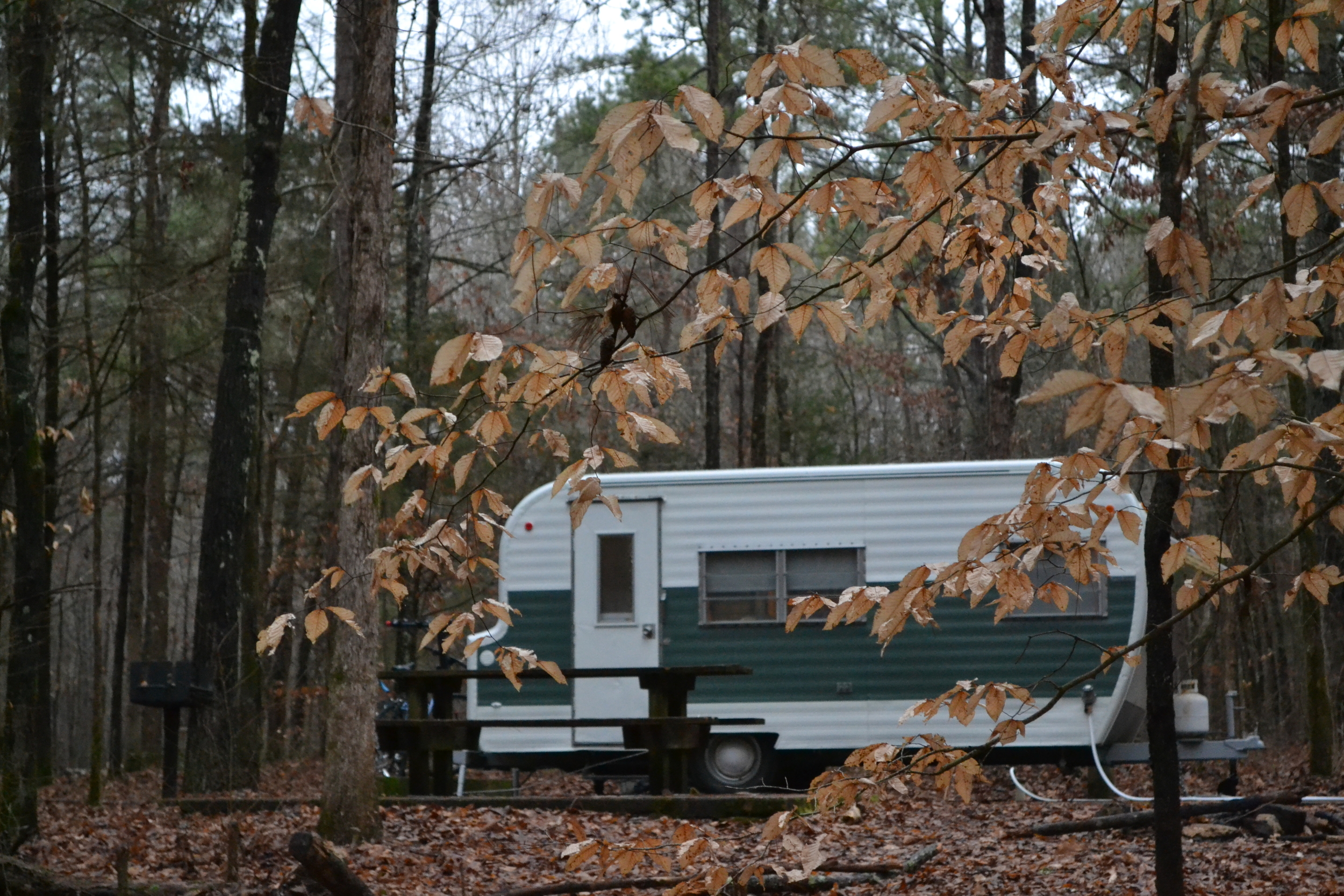 Wall Doxey State Park