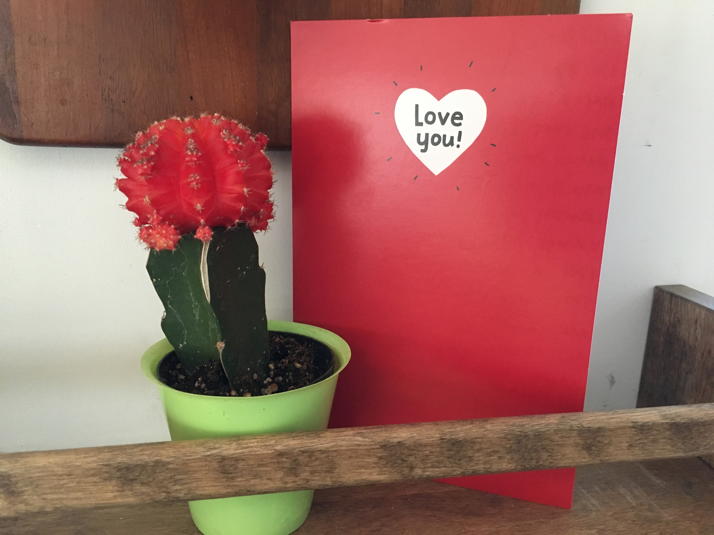 Actual Valentine's Day card I gave Carson. Note: NOT a love cactus. Just a regular ol' cactus.