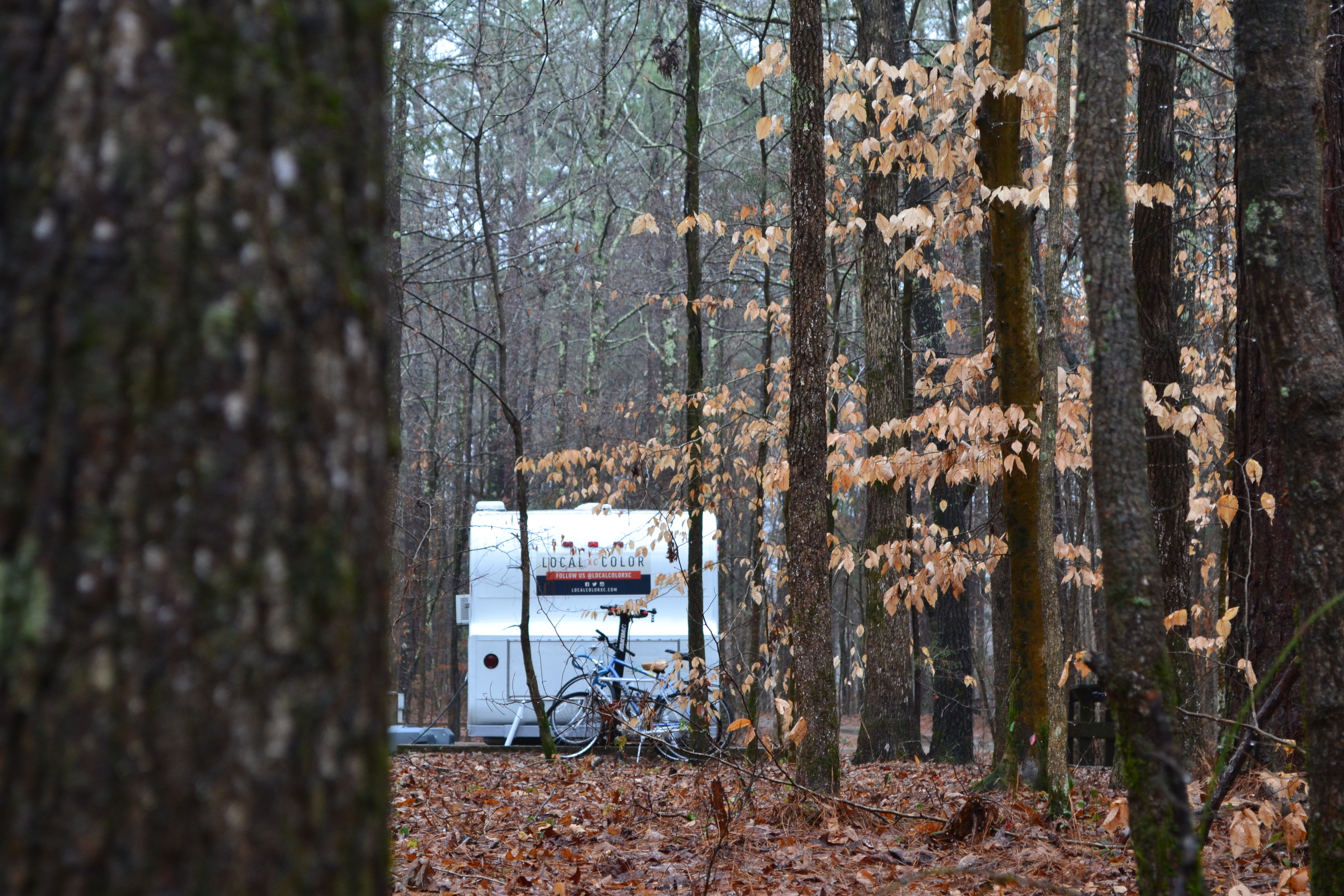 Elsie rides out the unseasonable chill and spooky isolation at Wall Doxey State Park, near Oxford, MS.