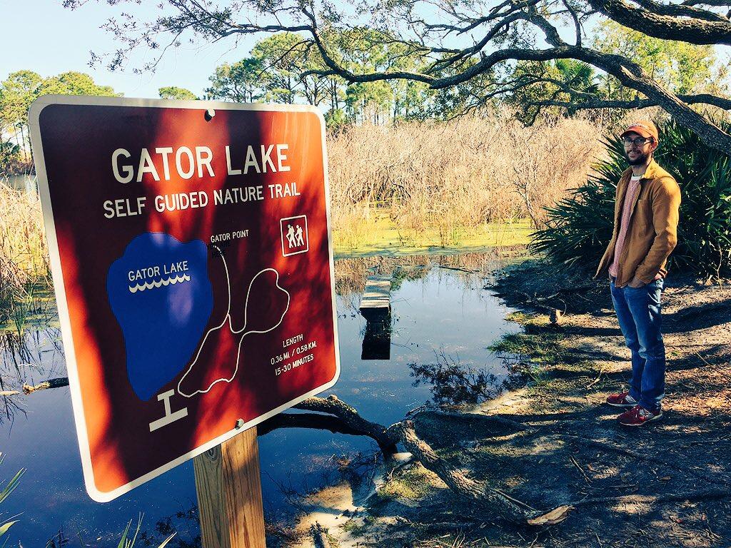 No gators in gator lake. They're hibernating during the winter!