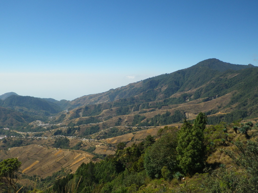 the view from our trek