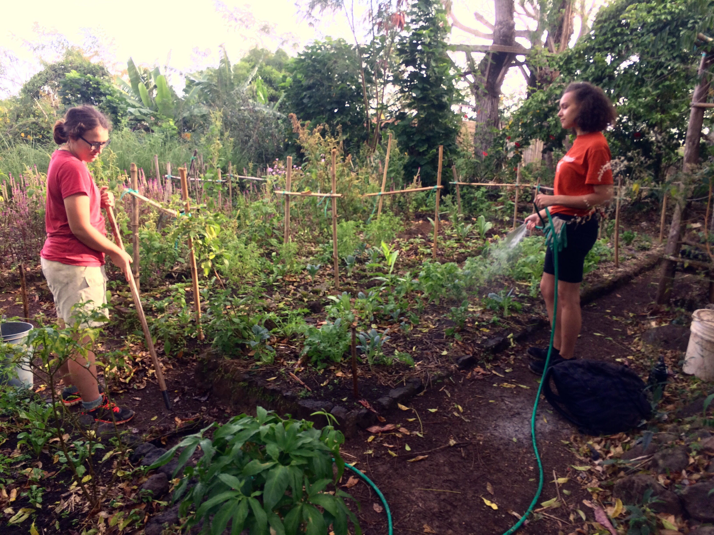 First time: learning about and utilizing organic permaculture practices in the garden. Syd and Tanasia clear away leaves and water the garden.