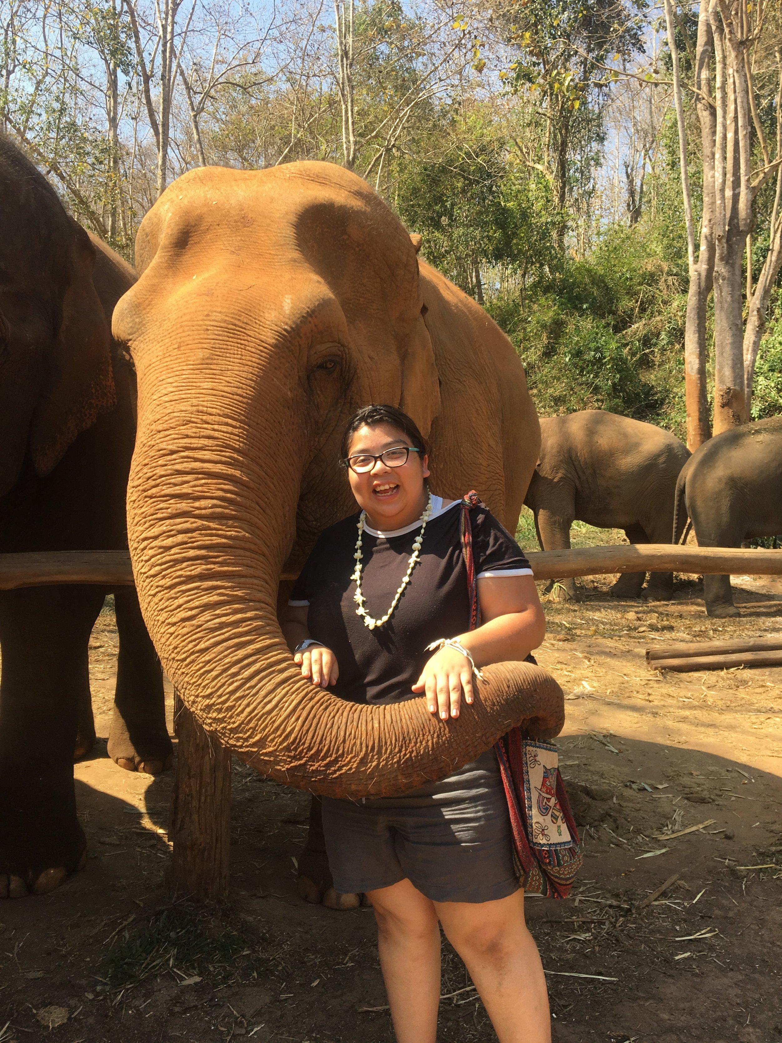 Elena elephant.jpeg