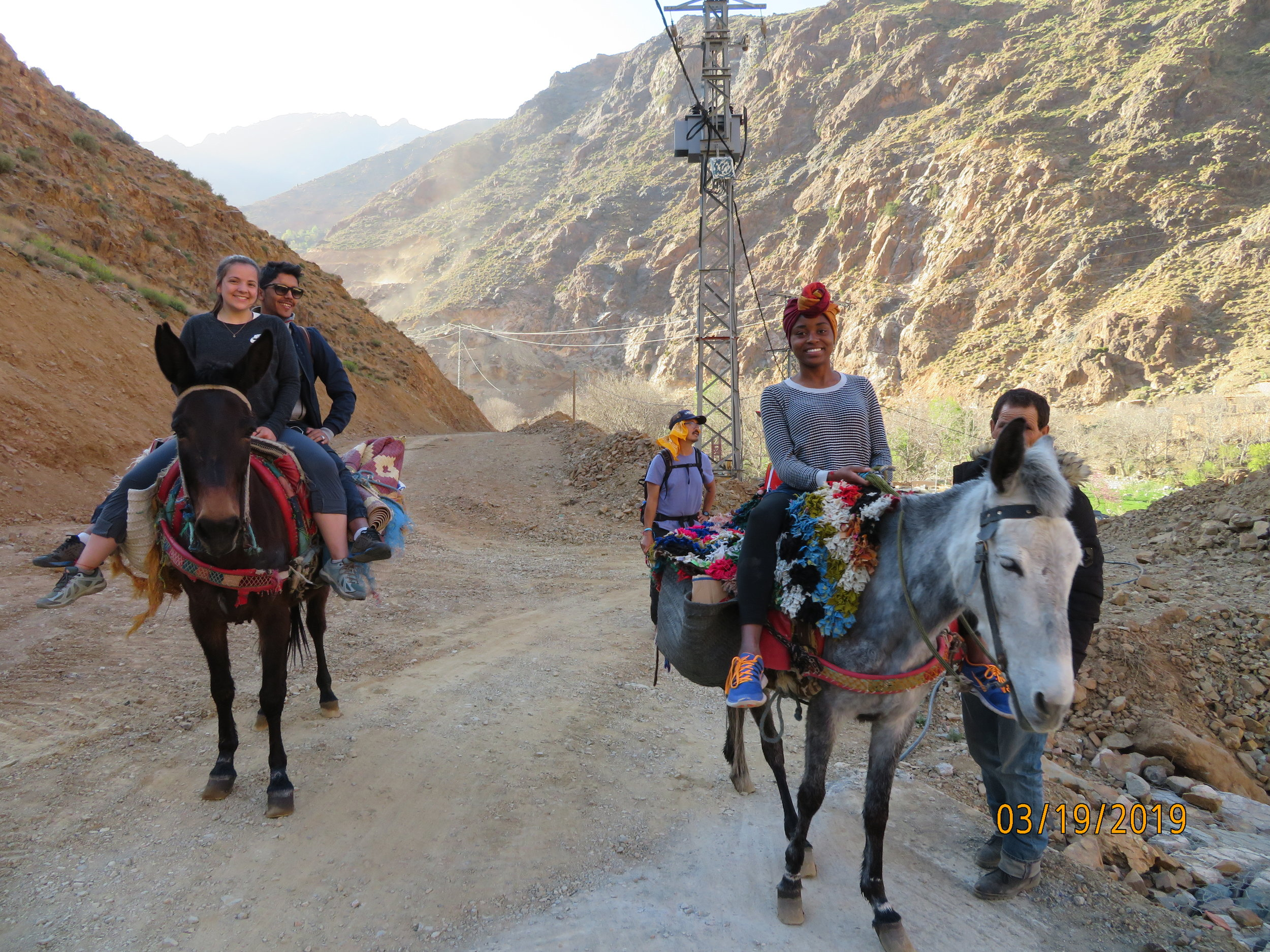Mules are the preferred mode of transportation for Salaam.