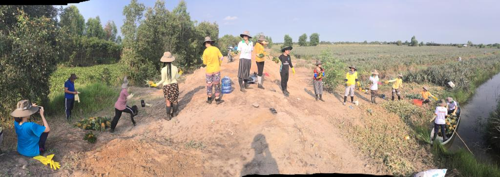 Sabai and Tan Tau University students learning to harvest pineapples in the Mekong Delta.