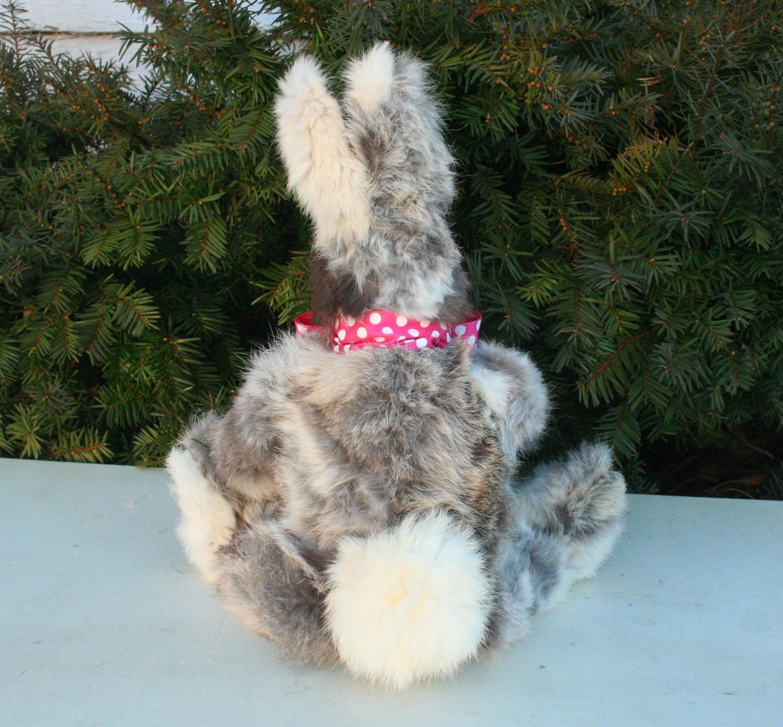 old brother rabbit.B.JPG