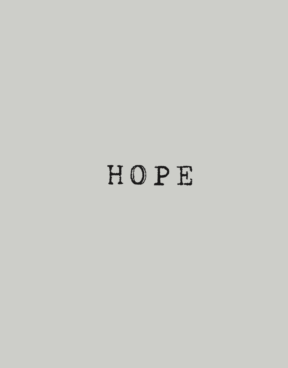 HOPE, Birgir Snæbjörn Birgisson, Hafnarborg Art Museum, Hafnarfjörður, Iceland, 2016  CLICK FOR A PDF