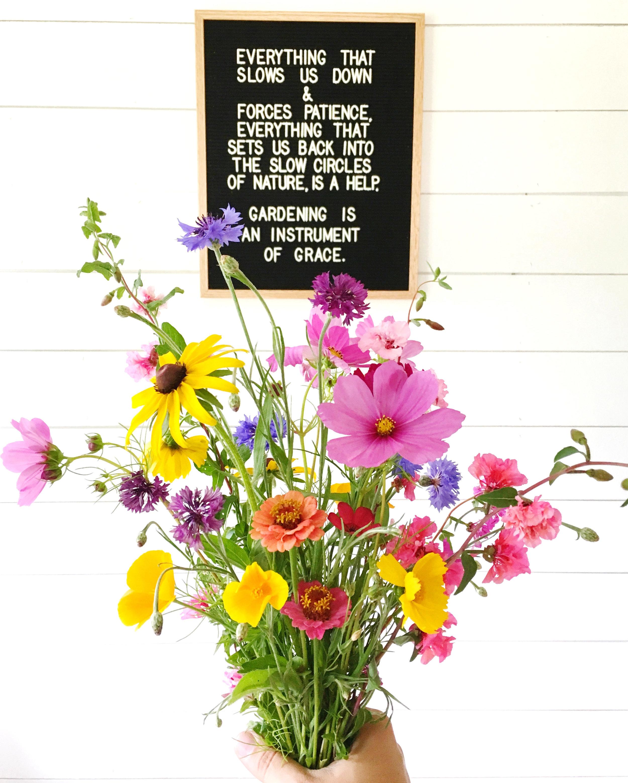 may sarton gardening quote