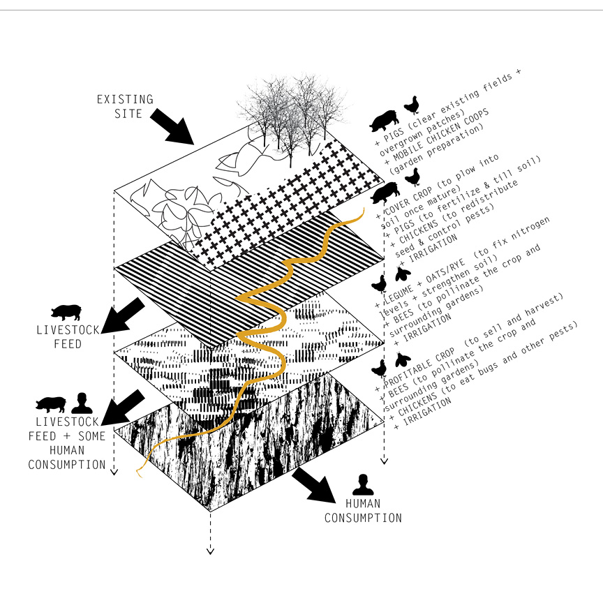 livestock + crop rotation research