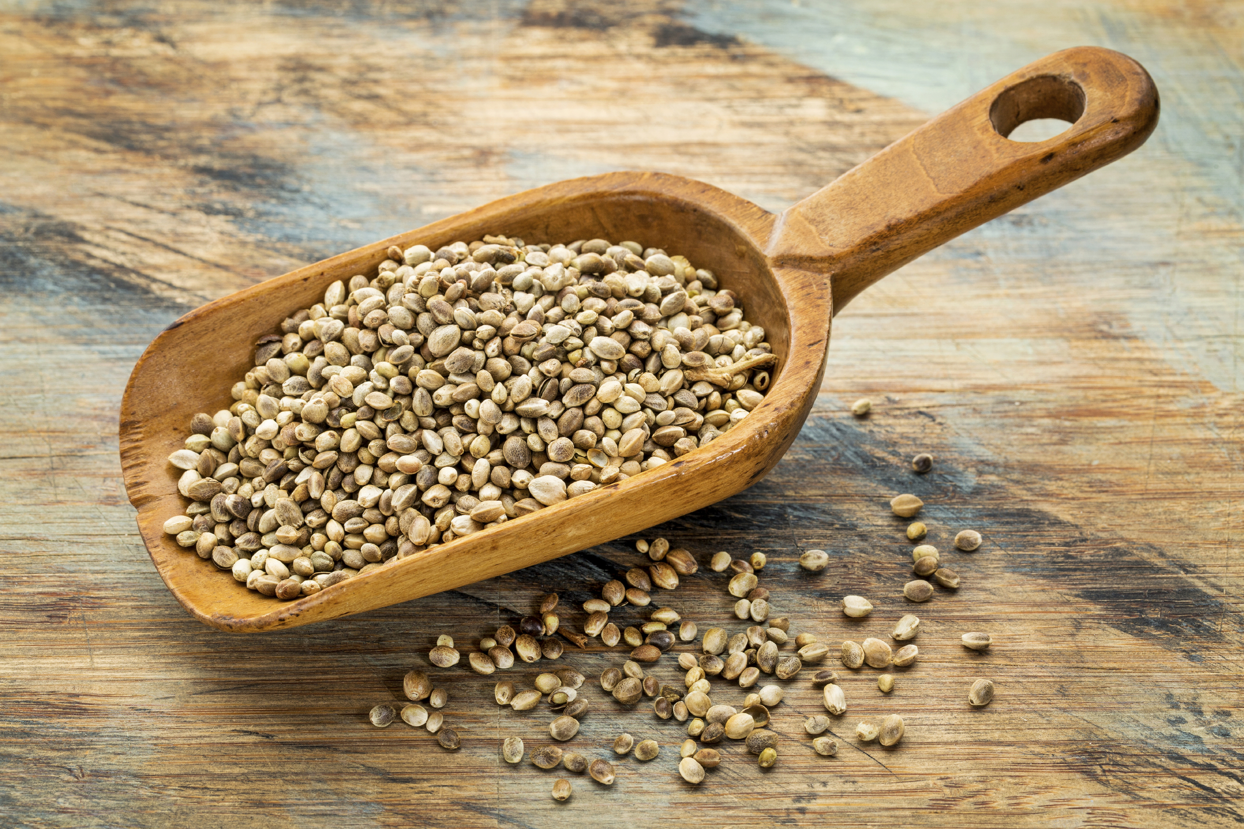 Hemp seeds and oil are a rich source of omega 3 fatty acids.