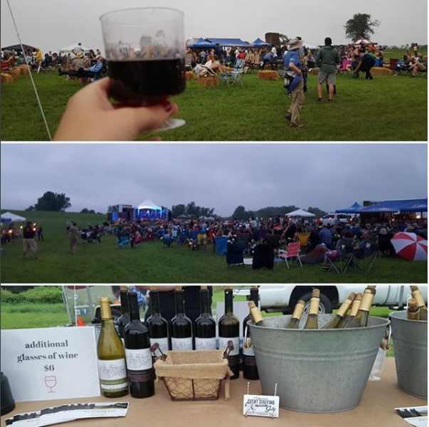 Mother Nature did not stop this crowd from enjoying Natural Lands' Friday Night Lights at the beautiful Cheslen Preserve on July 14. We had such a fun time pouring Borderland Vineyard's wines!