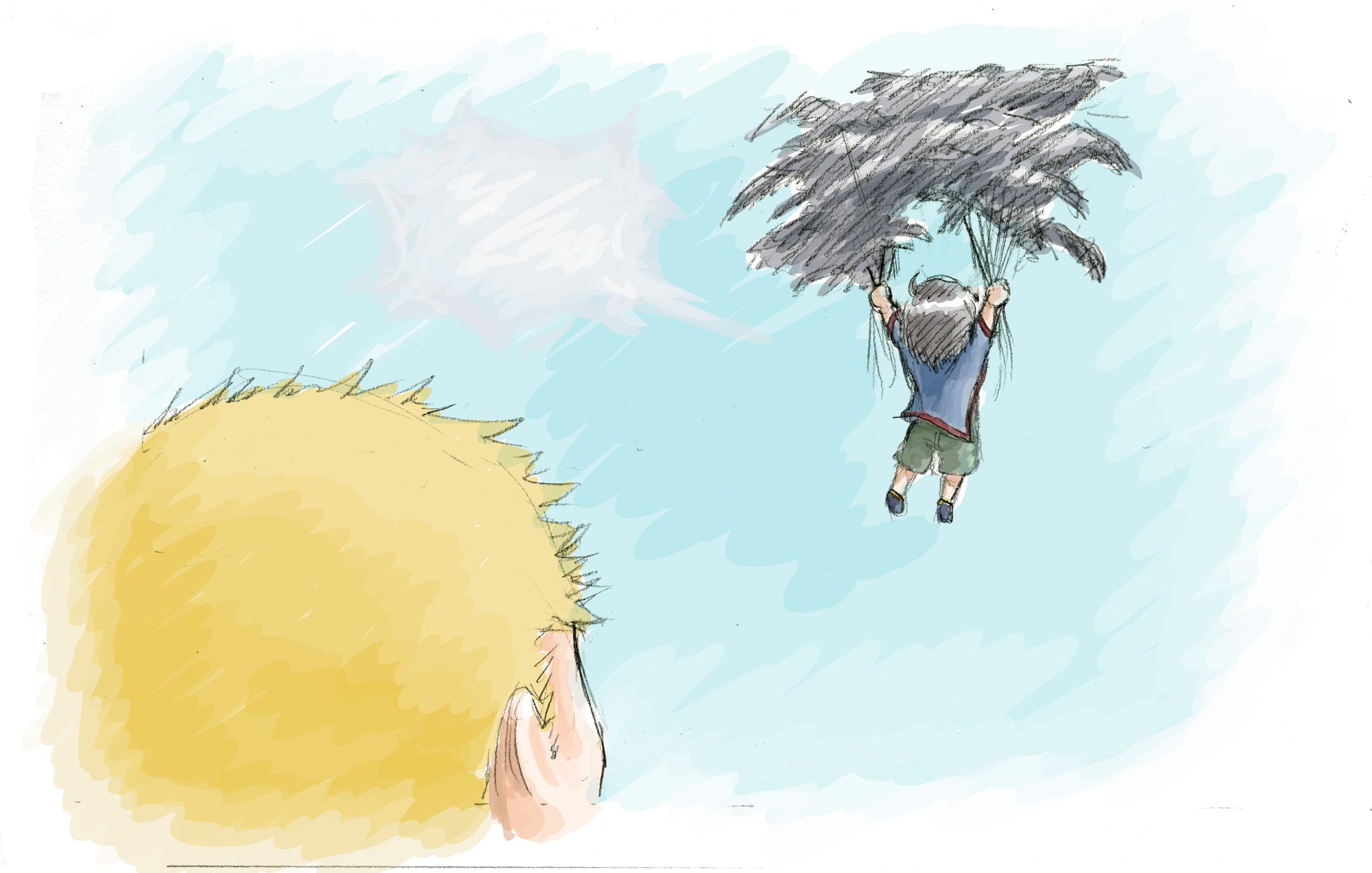 A Boy & His Crow