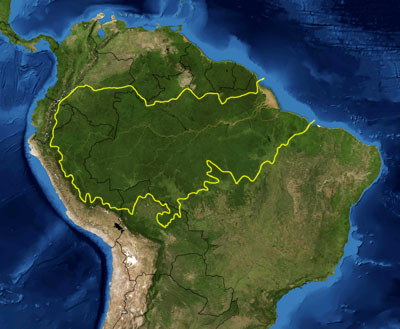 Map of the Amazon rainforest ecoregions as delineated by the WWF. Yellow line approximately encloses the Amazon drainage basin. National boundaries shown in black. Satellite image from NASA. (Wikipedia)