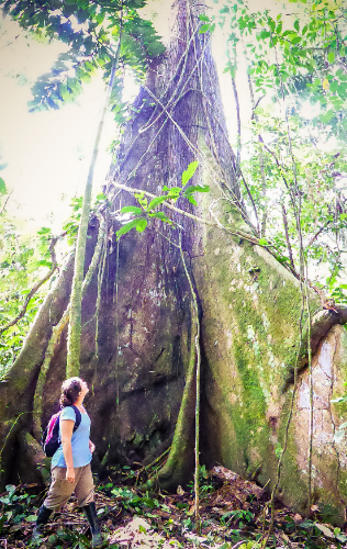 Joanne next to a huge tree.