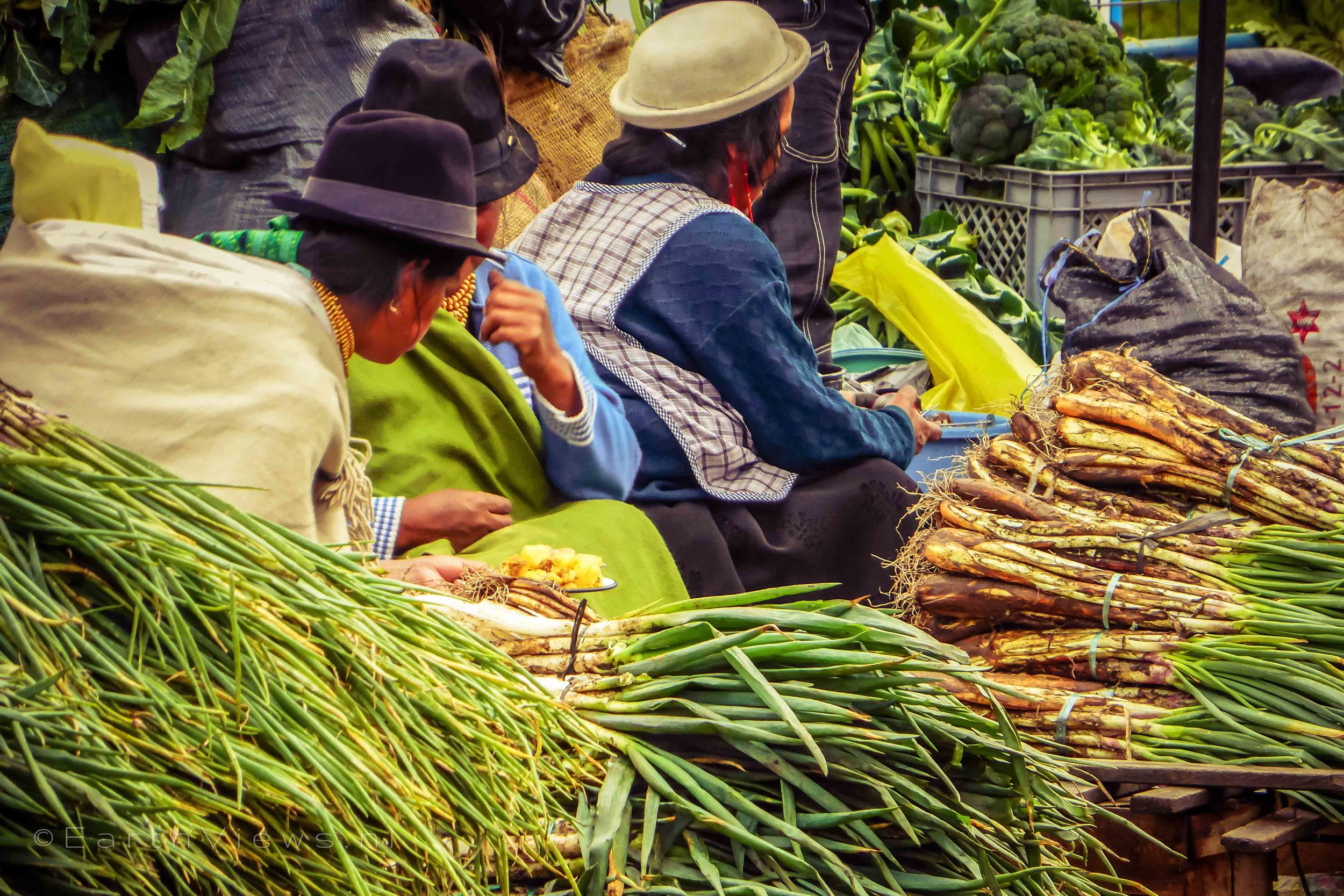 Otavaleñas on the market selling vegetables.