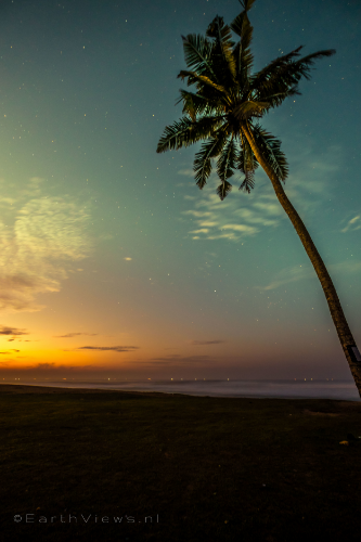 Text: Palm trees against a night sky during morning twilight at Weligama, Sri Lanka.