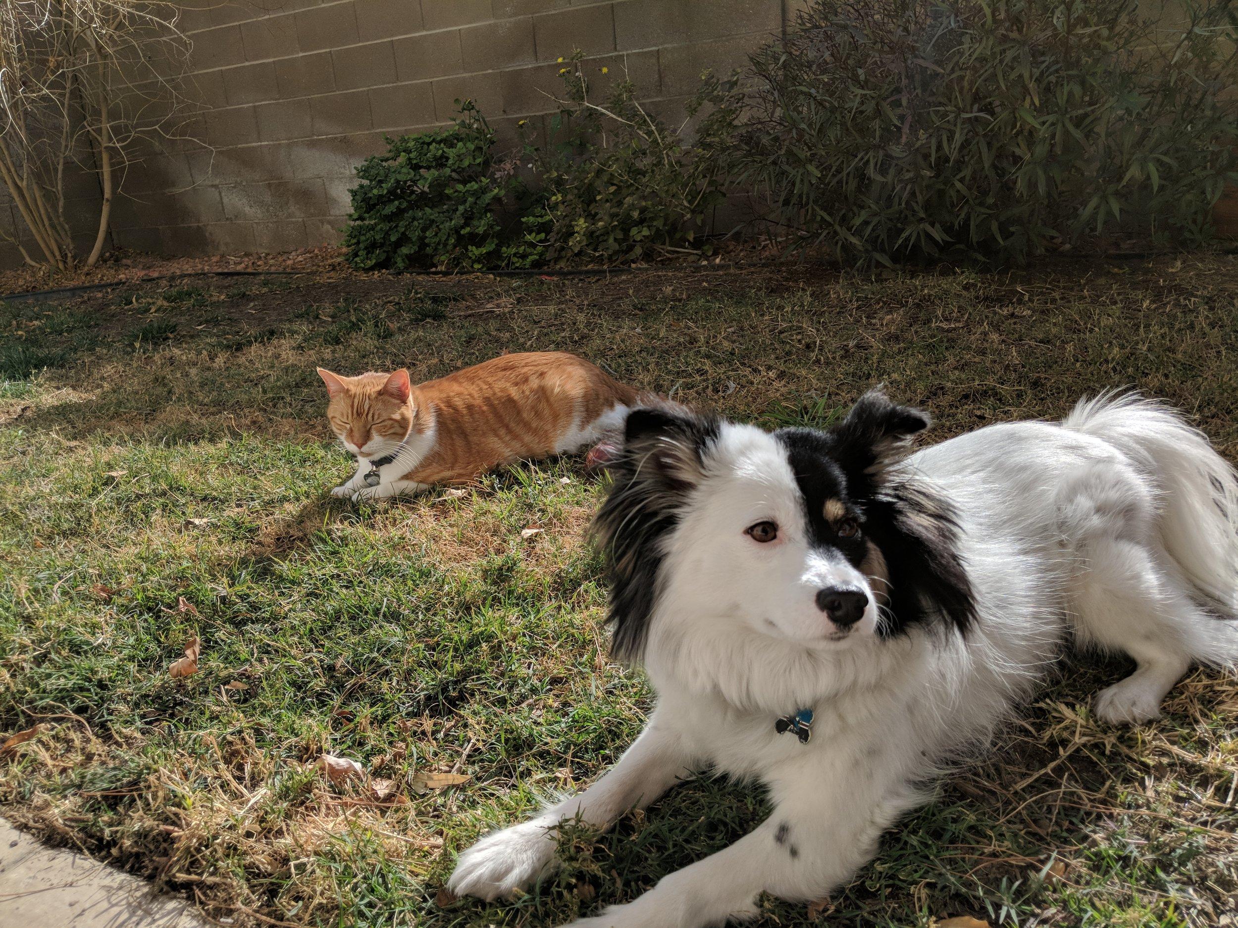 Quinn and Kitty.jpg