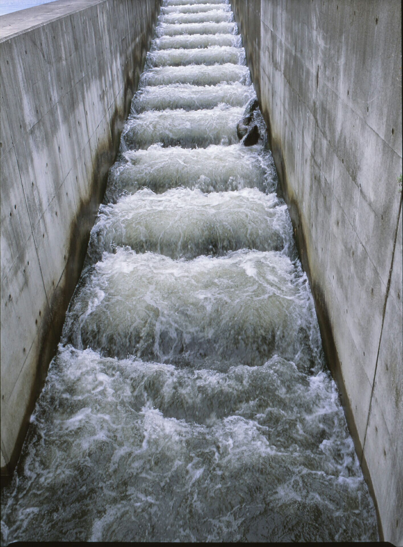 fish ladder (mamiya 645, 80mm, Velvia 100)