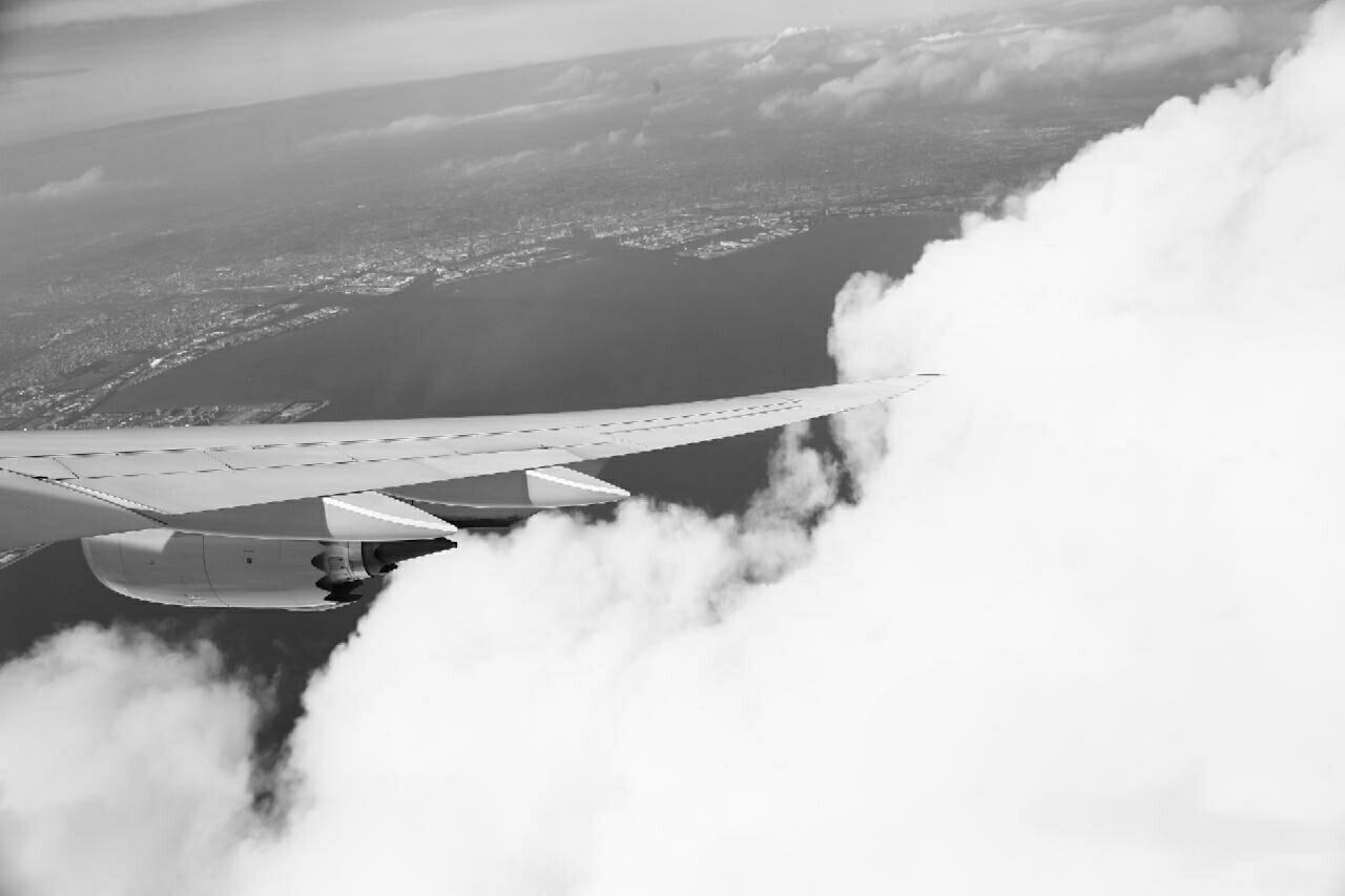 flying high over Tokyo