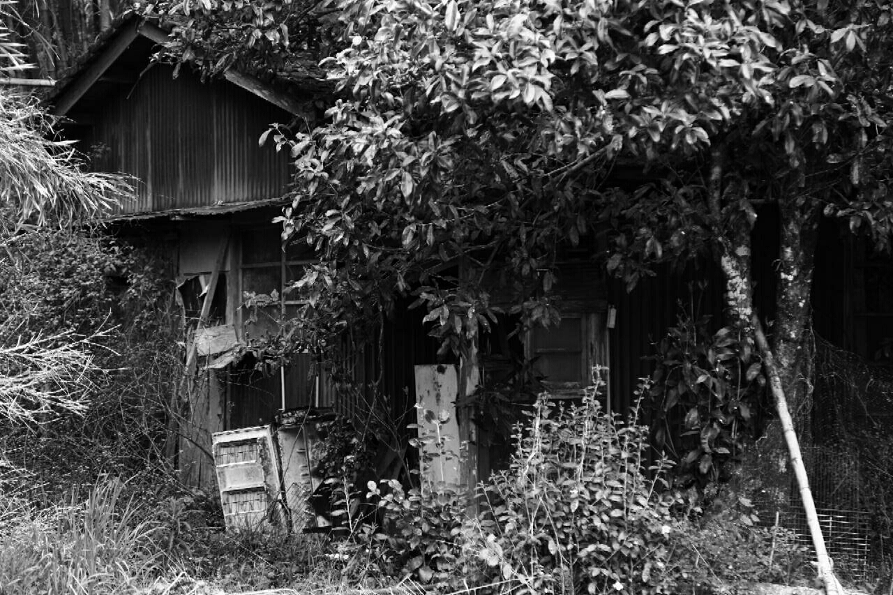 an example of an abandoned family home in a small hamlet in the mountains of Kagoshima
