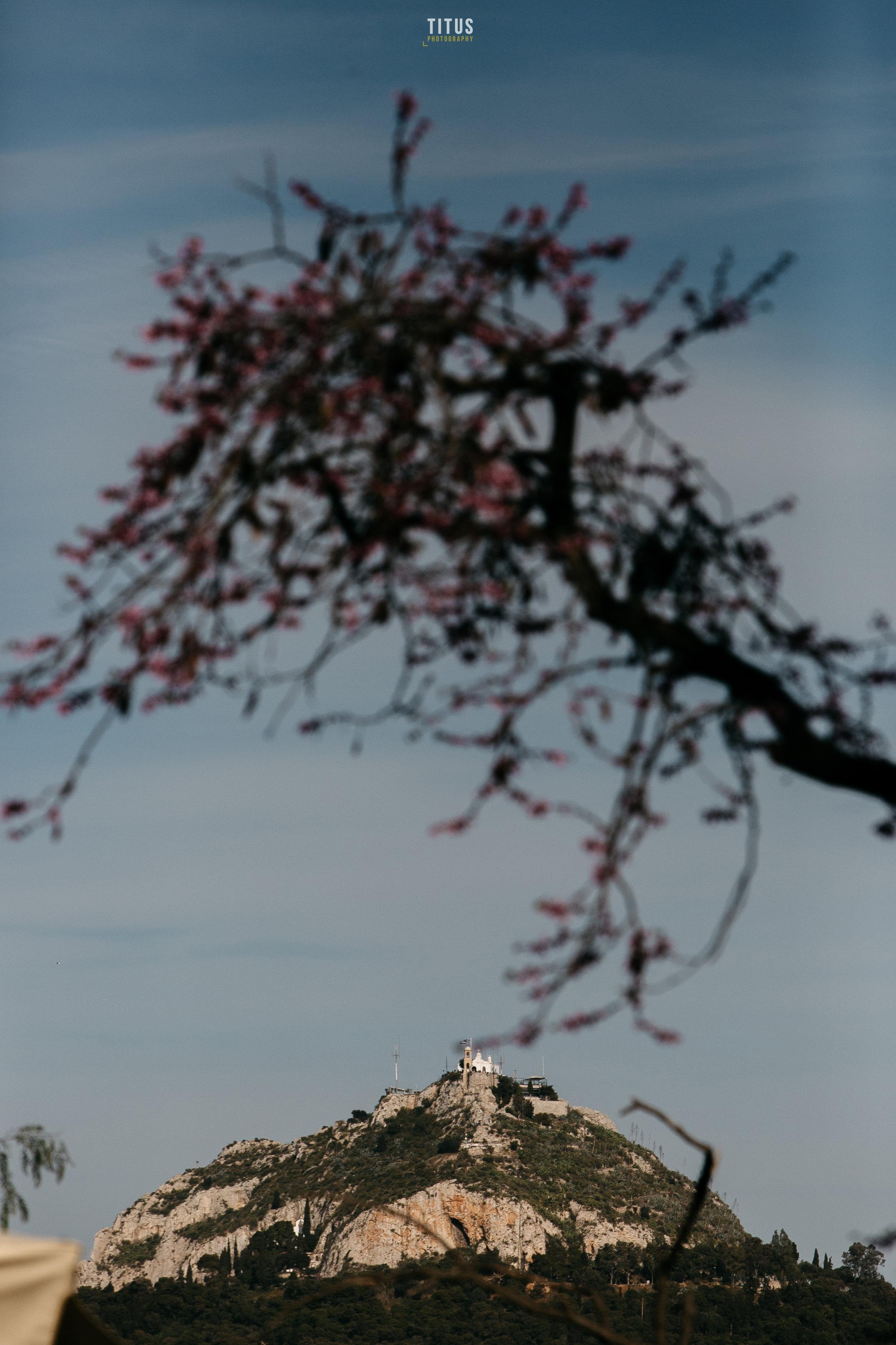 063-mons-athens-blog images.JPG