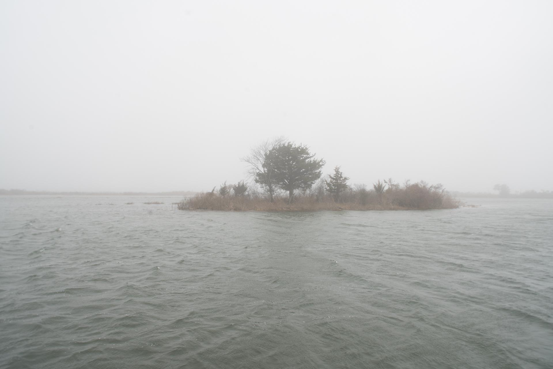 Assateague National Seashore, Maryland
