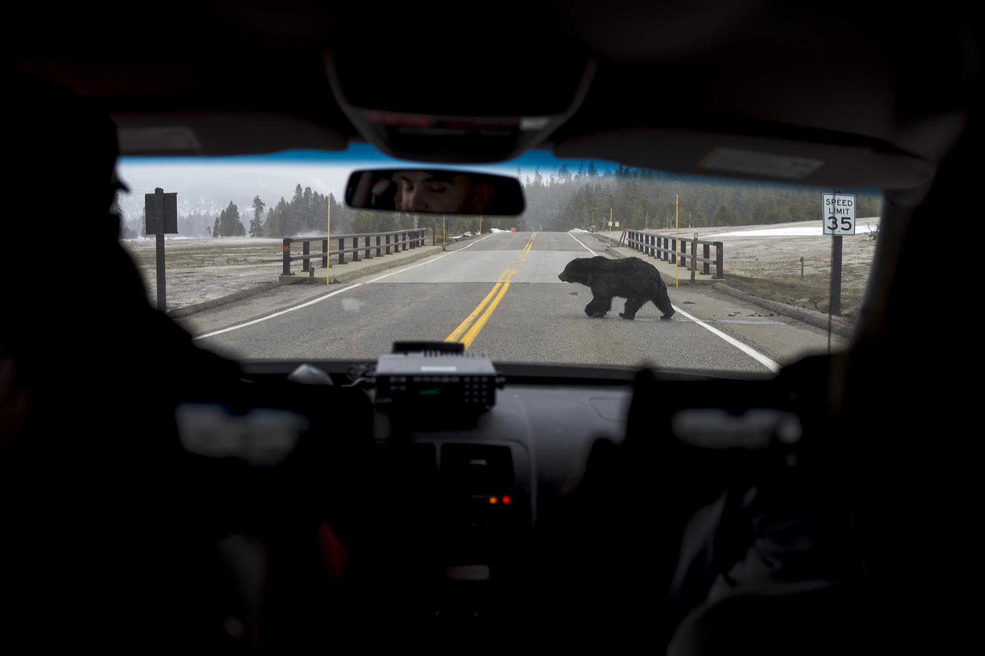 13_Yellowstone_10.jpg
