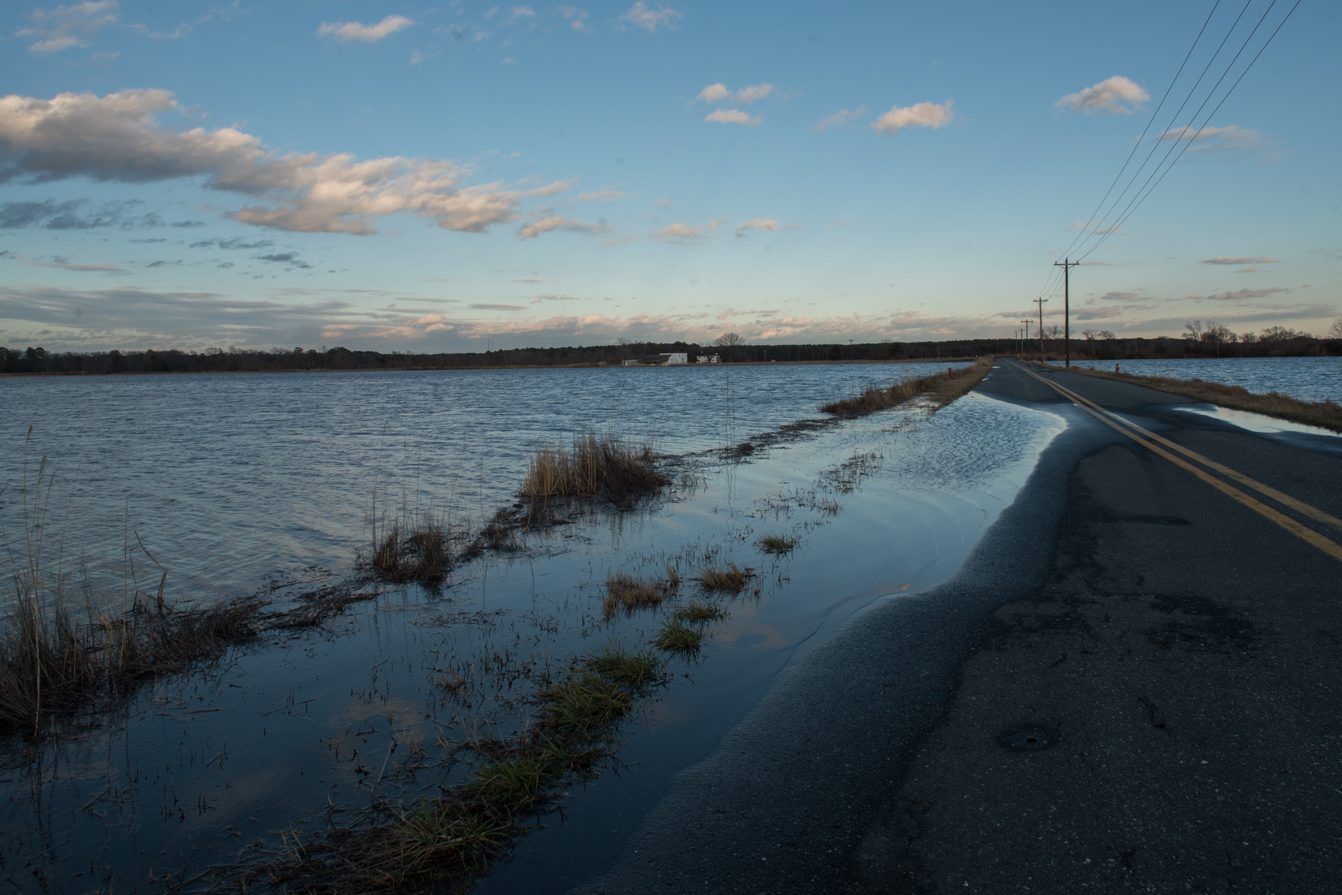 High tide on Maryland's eastern shore after a winter storm near Blackwater National Wildlife Refuge.