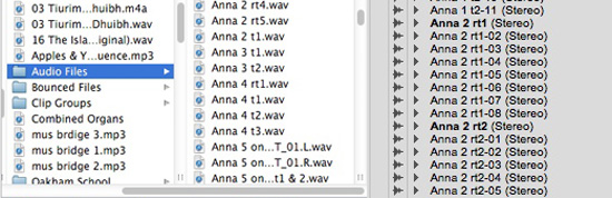 Clip-List-&-audio-Files-folder.jpg