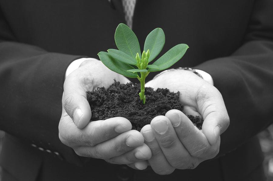 bigstock-Business-Growth-4628890.jpg
