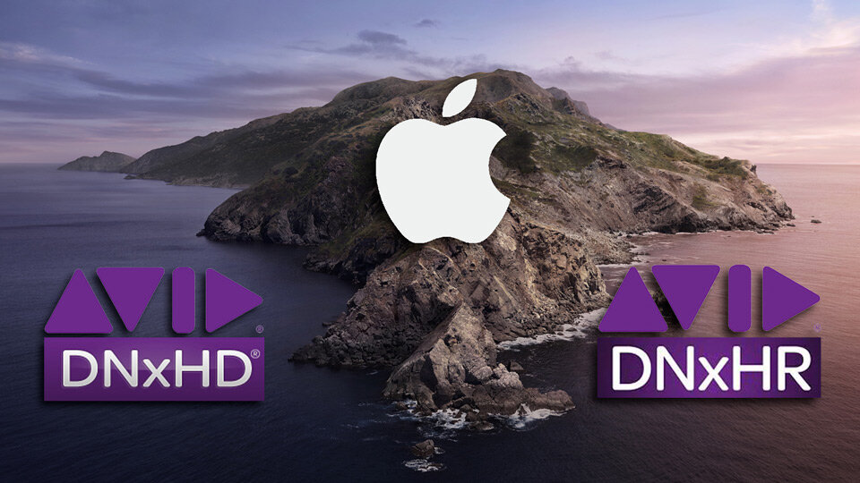 Video Codec Support in macOS Catalina