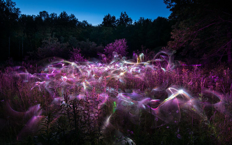 Sacred_Garden_Patrick-Rochon_0348.jpg