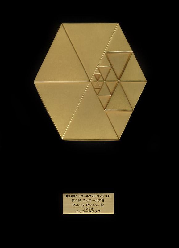 Nikon_Award_Patrick_Rochon.jpg