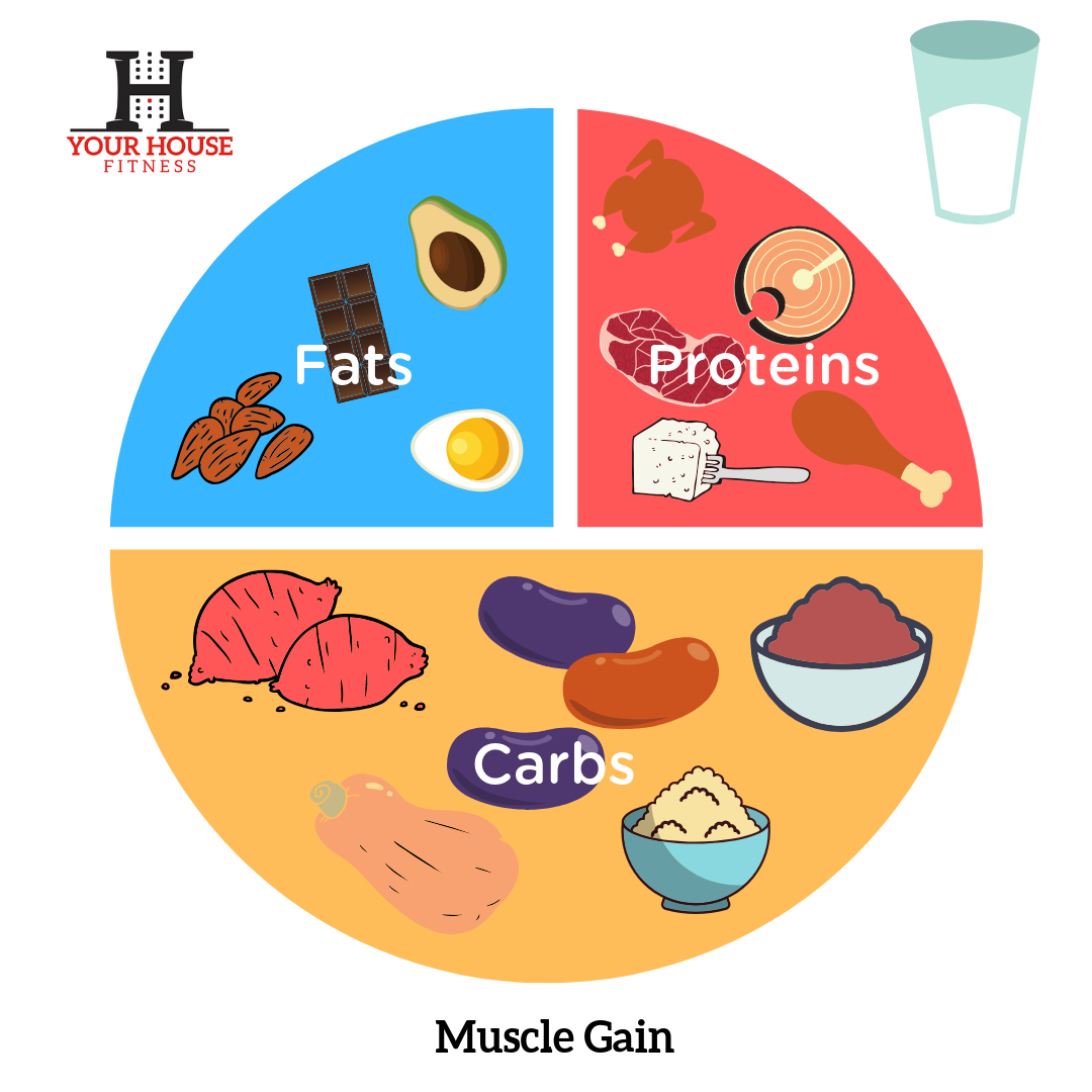 Muscle Gain Nutrition Plan