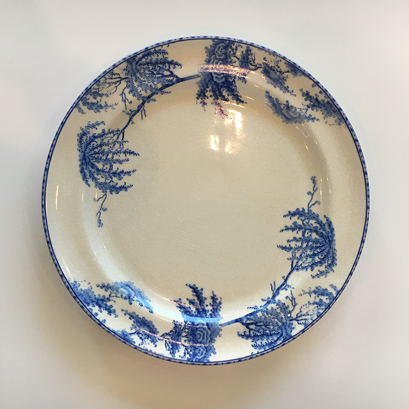 plate-3.jpg