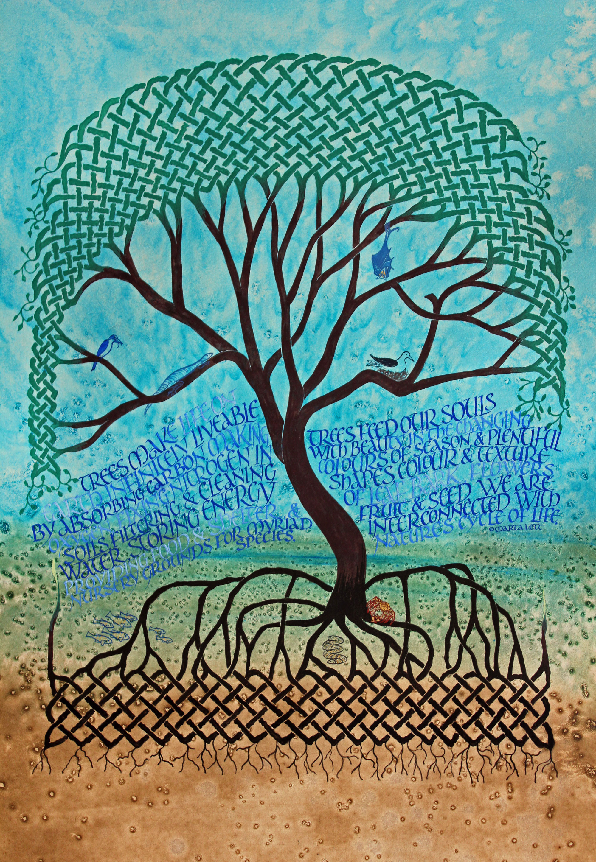 Tree of Life - Mangrove