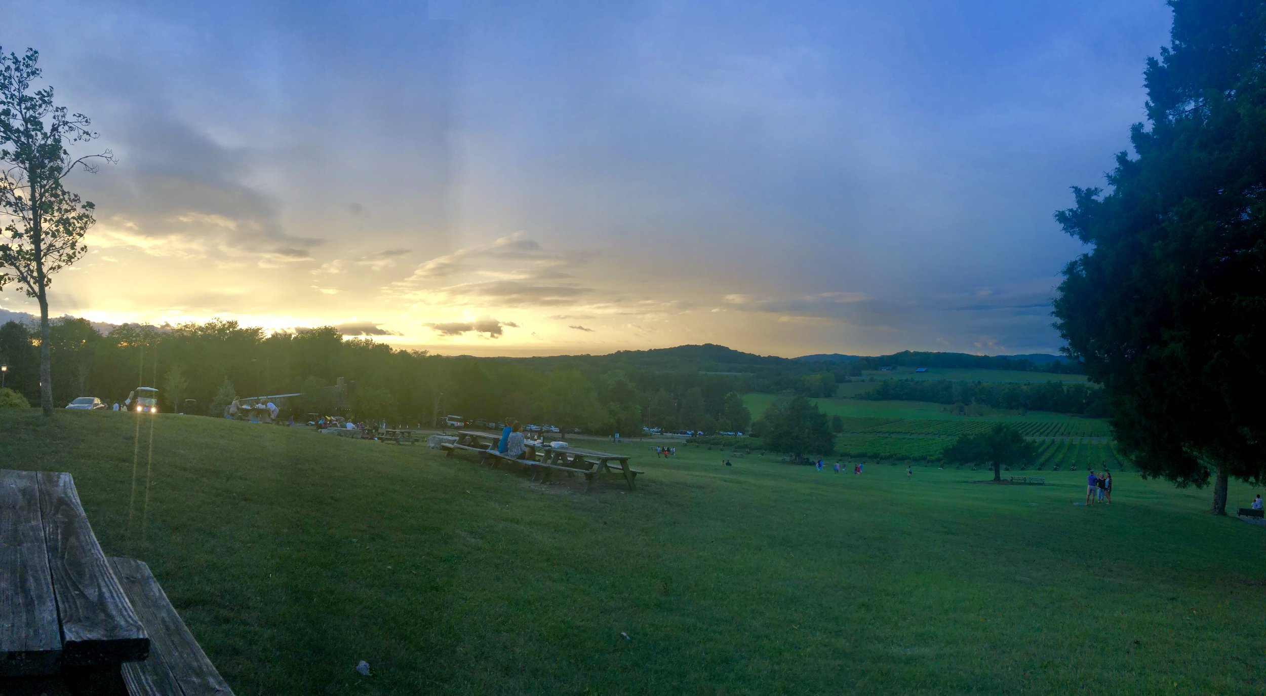 Sunset while enjoying the view and the wine at Arrington Vineyards.