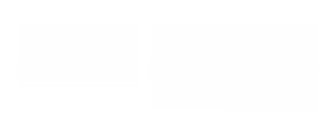 chelle-wordmark-1.png